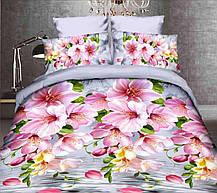 Комплект постельного белья от украинского производителя Polycotton Двуспальный T-90934, фото 3
