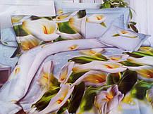 Комплект постельного белья от украинского производителя Polycotton Полуторный T-90953, фото 3