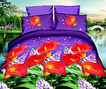 Комплект постельного белья от украинского производителя Polycotton Полуторный T-90954, фото 3