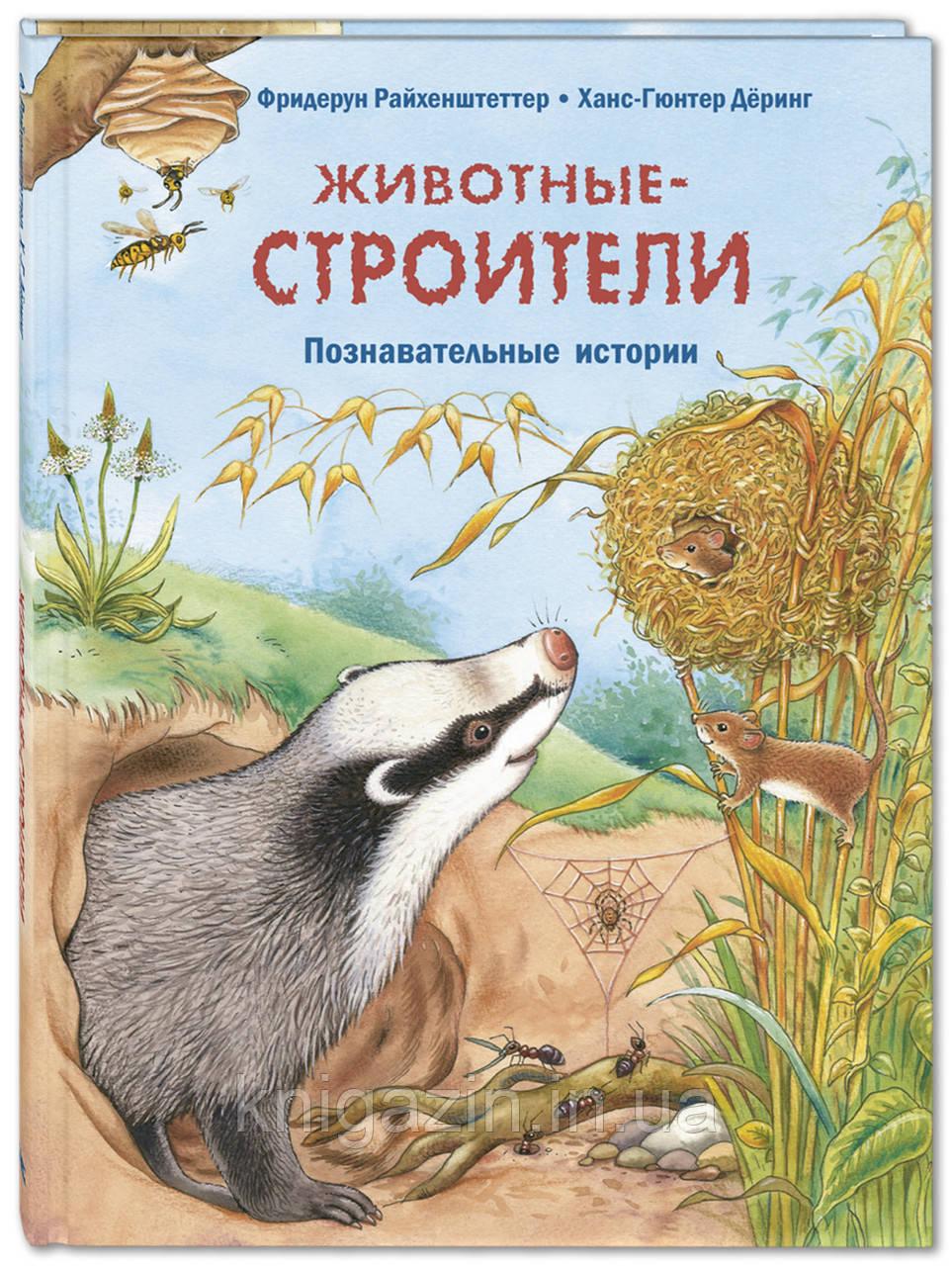 Детская книга Животные-строители. Познавательные истории  Для детей от 3 лет