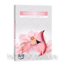 Ароматические свечи таблетки BISPOL Орхидея