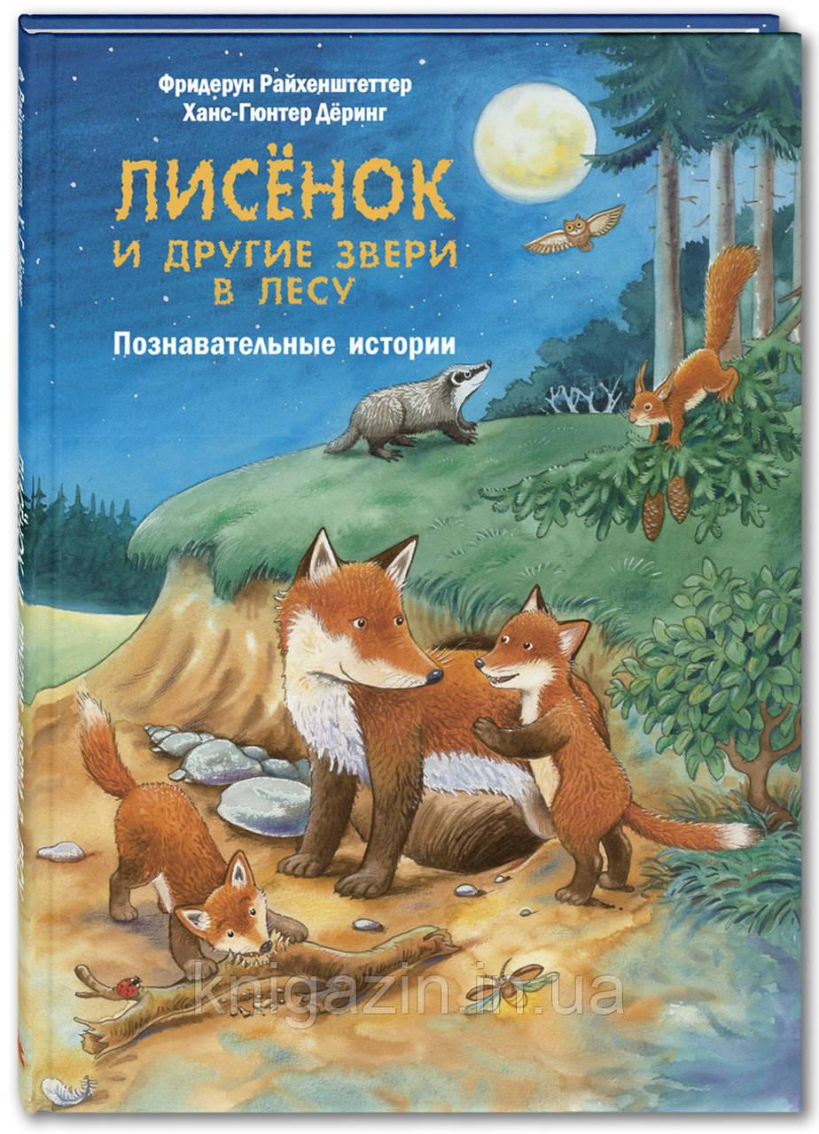 Детская книга Лисёнок и другие звери в лесу. Познавательные истории Для детей от 0 до 6 лет