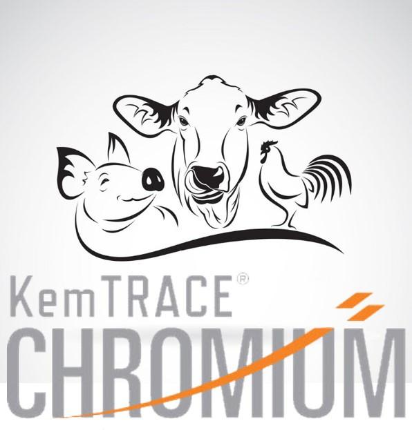 Пропионат хрома 0,4% - КЕМТРЕЙС