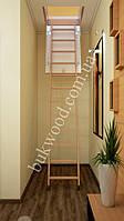 Чердачная лестница Bukwood ECO ST 120х60 см, фото 1