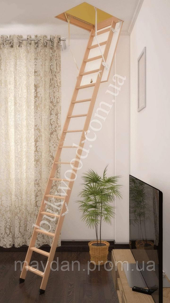 Чердачная лестница Bukwood ECO Long 120х90 см