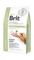 Сухой корм Brit Veterinary Diet Dog Diabetes беззерной корм при диабете 2кг (170943/8103)