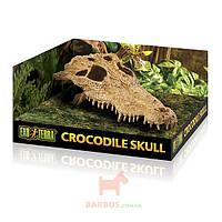 Декорация Череп крокодила Exo Terra Crocodile Skull (Экзо терра, Хаген) Exo-Terra (Hagen)