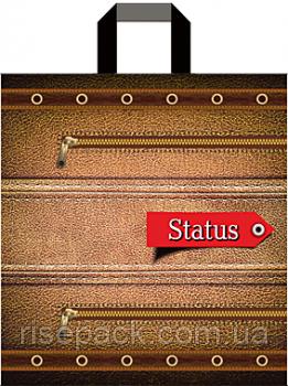 Пакет подарочный с петлевой ручкой Status