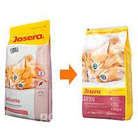 Josera (Йозера) Minette сухой корм для котят 10кг