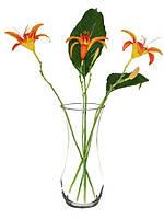 Флора ваза 26 см тюльпан