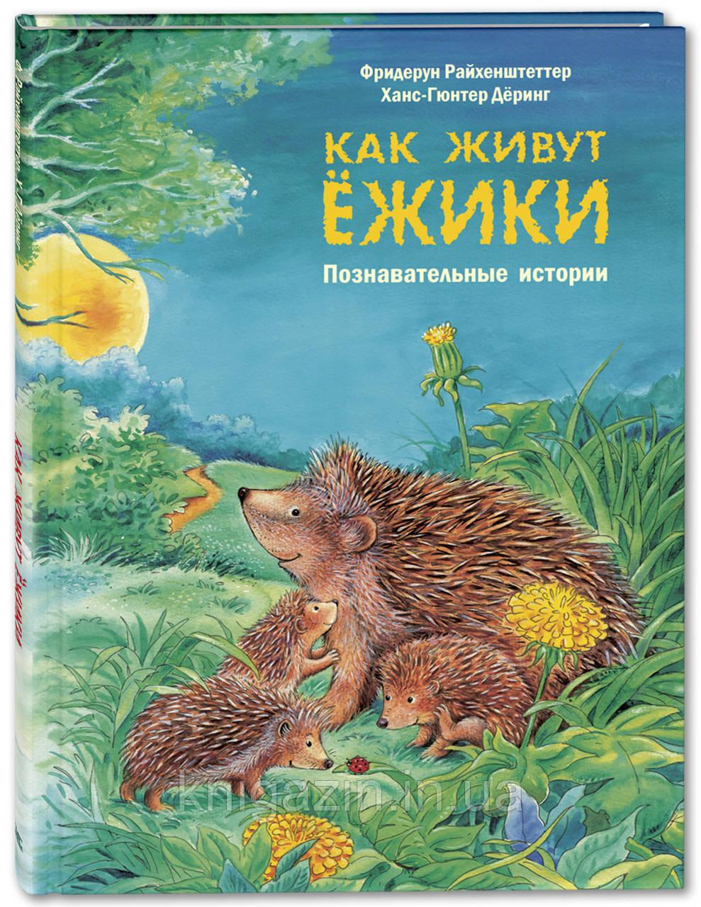 Детская книга Как живут ёжики Познавательные истории Для детей от 0 до 6 лет