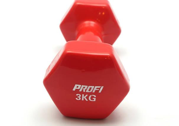 Гантель 3 кг Profi с виниловым покрытием (Красная), фото 2