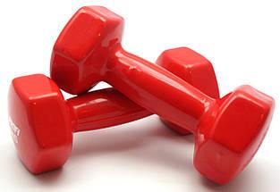 Гантель 3 кг Profi с виниловым покрытием (Красная), фото 3