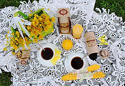 Український Іван-чай