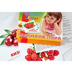 """Набор детских карточек """"Фрукты"""", 951301"""