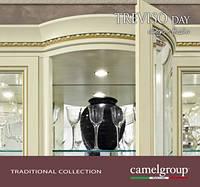 гостиная Тревизо Дэй Фрассино/Treviso Day, итальянская мебель, Camelgroup, классика, цена от: