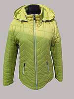 Куртка Женская Зеленая Демисезонная Короткая