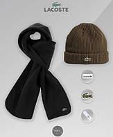 Зимний комплект шапка и шарф Lacoste (brown), коричневая шапка Лакосте