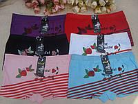 Трусики женские шортики ROSE