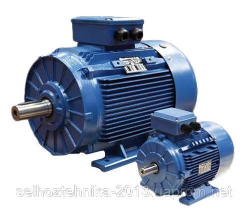 Электродвигатель АИР 200 M8 18,5кВт 750 об./мин. (лапы)