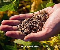 Виснаження ґрунту. Як збільшити врожайність на «втомленних» ґрунтах?