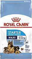 Royal Canin Maxi Starter сухой корм для щенков до 2 месяцев, беременные и кормящие суки 15КГ