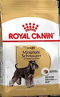 Royal Canin Miniature Schnauzer Adult сухий корм для собак від 10 місяці 0,5 КГ