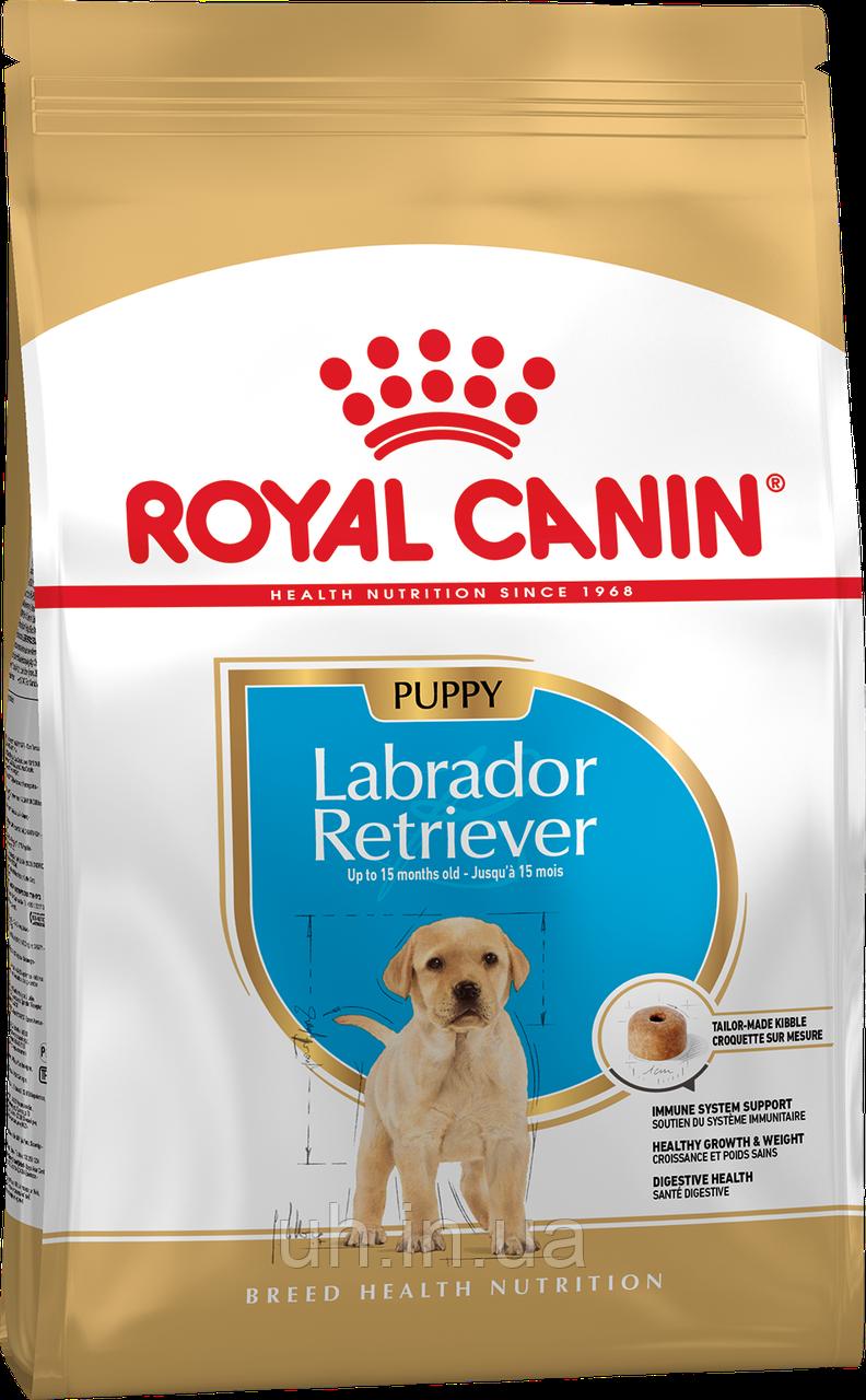 Royal Canin Labrador Retriver 30 Junior/Puppy сухой корм для щенков до 15 месяцев 3КГ
