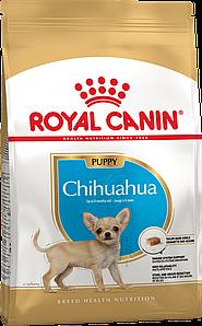 Сухой корм Royal Canin Chihuahua Junior для щенков, 0,5КГ