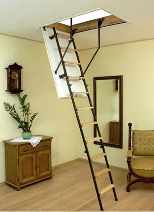 Чердачная лестница OMAN - STALLUX TERMO , фото 2