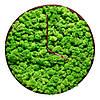 Годинник з моху в дерев'яній рамі