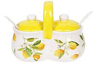 Банка для специй двойная керамическая 225мл с ложками Сочные лимоны, DM122-Y