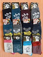 Носки женские теплые махровые хлопок стрейч р.23.От 6 пар по 12,50грн, фото 1
