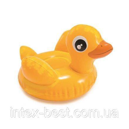 Надувная водная игрушка Intex 58590-DD «Утенок Дакотта» (22 х 18 см )