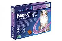 Таблетки Boehringer Ingelheim NexGard Spectra против паразитов для собак L (15-30 кг) (1 таблетка)