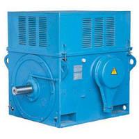 Электродвигатель ДАЗО4-560ХК-10 400кВт/600об\мин 6000В