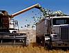 Воспользуйтесь возможностью получить от государства компенсацию для приобретения сельскохозяйственного оборудования и техники
