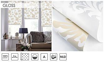 Рулонні штори Gloss (2 варіанта кольору)