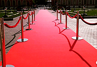 Червона доріжка ExpoSalsa, фото 1