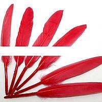 (100шт) Перо декоративное цветное. 14 см. Цена за 100 шт. Цвет - красный