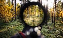 Hunt Expert приманка для охоты на копытных