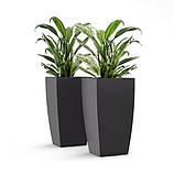 Аксессуары для растений