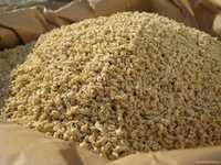 Сырая дробина корм для дойных коров