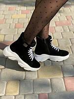 Замшевые ботинки женские деми/зима Uk0670