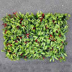 Газон-коврик самшитовый  красные ягоды для фитостен, 40 × 60 см.