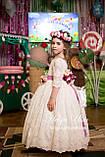 """Святкова сукня """"Камея"""" (відео) на випускний бал, 146, фото 3"""