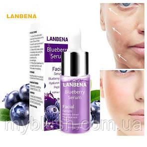 Сыворотка Lanbena Blueberry Serum, с гиалуроновой кислотой и экстрактом черники 15 ml
