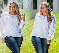 Блузка женская с гипюром в расцветках 6283