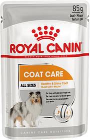 Влажный корм для собак с тусклой и сухой шерстью Royal Canin Coat Care паштет 85 г
