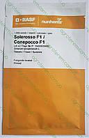 Семена томата Солероссо F1 ( Solerosso f1) 1000c (Солеросо), фото 1